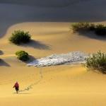 Les dunes de sables