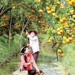 ceuillirdesfruits
