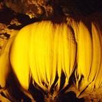 lotusdanslagrottedenguomngao