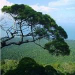 parcnationalaphuquoc
