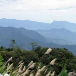 sur la colline de vong nguyet